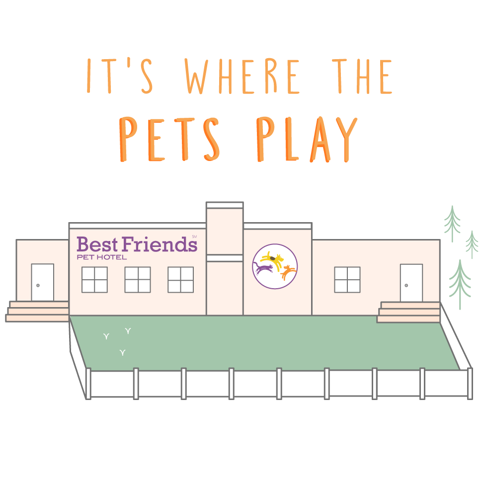 Building_Illustration_PetsPlay.png