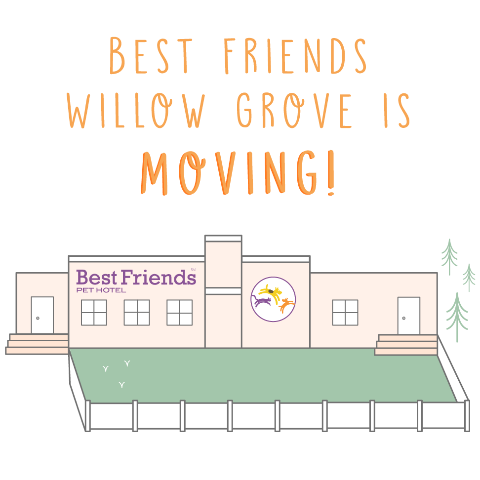 Best Friends Willow Grove is moving!