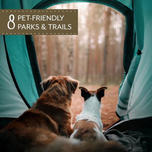 Pet-Friendly-Parks---Blog-Main-Image-500x500